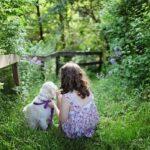 So vertragen sich Hunde und Kinder