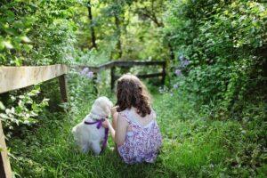 Überlegungen vor der Anschaffung eines Familienhundes.