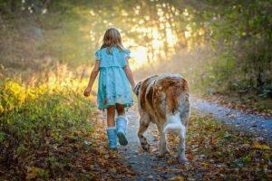 Überlegungen vor der Anschaffung eines Familienhundes