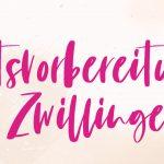 Wir testen: Online Kurs Geburtsvorbereitung für Zwillinge von Hebammenblog.de