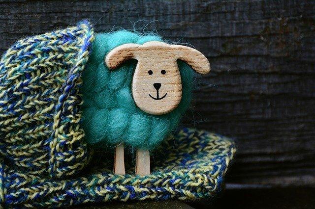 Schaf und Wolle: Mit dem richtigen Strickbuch ist Stricken lernen ein Kinderspiel.