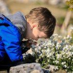 Mit deinen Kindern den eigenen Garten gestalten