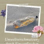 Umweltverschmutzung durch Einwegflaschen