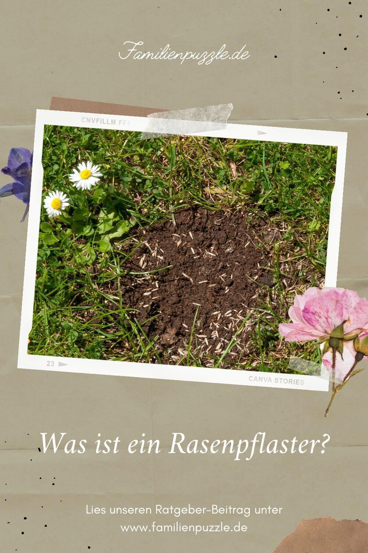 Welche Rasenkrankheiten gibt es und kann ein Rasenreparaturset helfen? Auf dem Foto: Eine Wieser, auf der ein Rasenpflaster angeracht wurde.